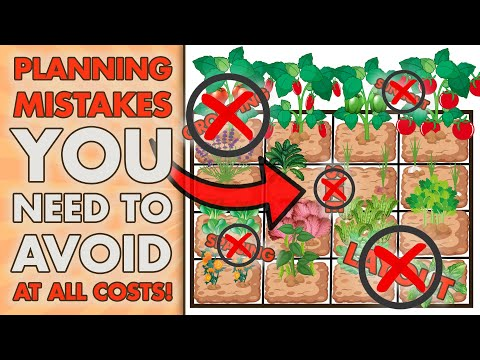 6 LARGEST Square Foot Garden Planning MISTAKES That You Wont Believe You Are Making!