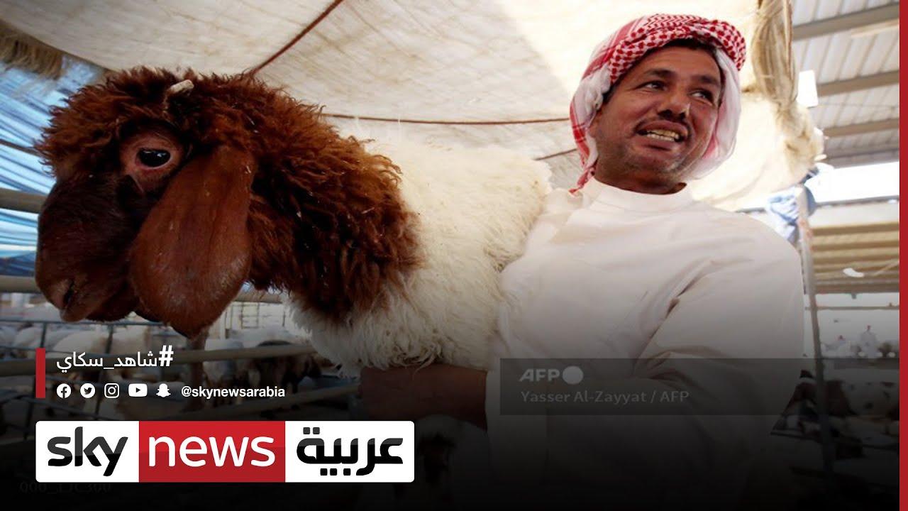 خروف العيد فرحة متوارثة في الكويت ينتظرها التجار | #الاقتصاد  - 19:55-2021 / 7 / 19