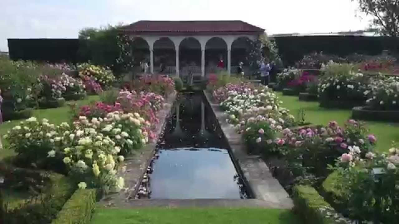 Visit David Austin Rose Gardens Albrighton UK 2014   YouTube