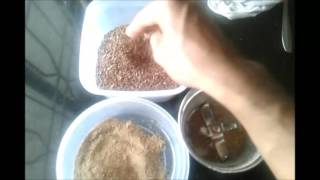 HEALTHIEST WAY OF CONSUMING FLAX SEEDS for Weight Loss, Reversing Diabetes & Heart Disease
