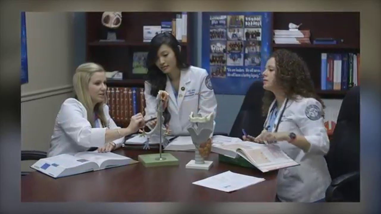 nsu anesthesiologist assistant program - fort lauderdale - youtube, Human Body