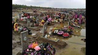 Шок! Видео с кладбища! В Кемерово за сутки появилось более 150 свежих могил! ВАТА ПЛЮС