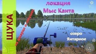Русская рыбалка 4 озеро Янтарное Щука с большого мыса
