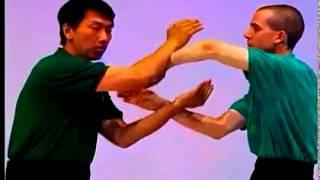 Cham Kiu Por el Maestro Benny Meng de Wing Tsun Kung Fu.