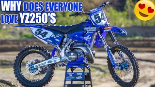 Why does everyone love Yamaha YZ250 2-Stokes?