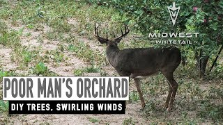 Grafting Apple Trees, Swirling Winds | Midwest Whitetail
