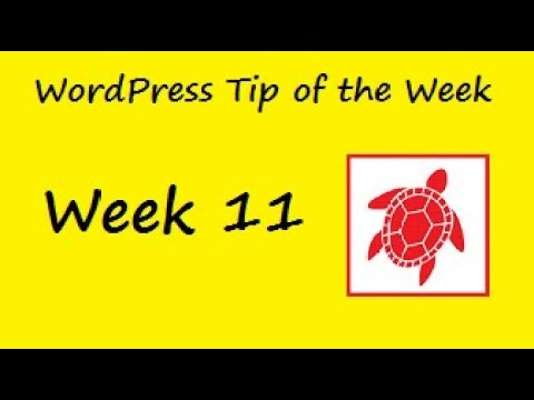 WordPress Tip of the Week - Week 11 - Changing the text on the Add to Cart button in Woocommerce