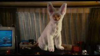 Como Cães e Gatos 2: A Vingança de Kitty Galore - Trailer Final (legendado) [HD]