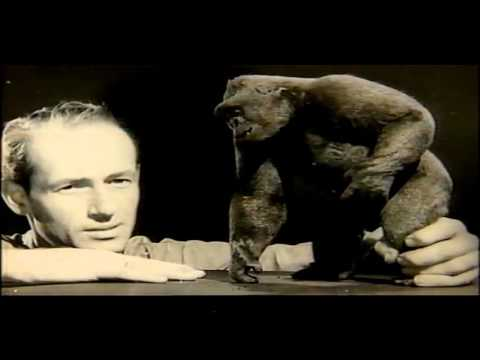 Working With Dinosaurs  -  Ray Harryhausen stop motion