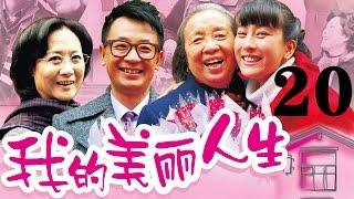 《我的美丽人生》黄海波/马苏/李明启(第20集)——爱情/家庭
