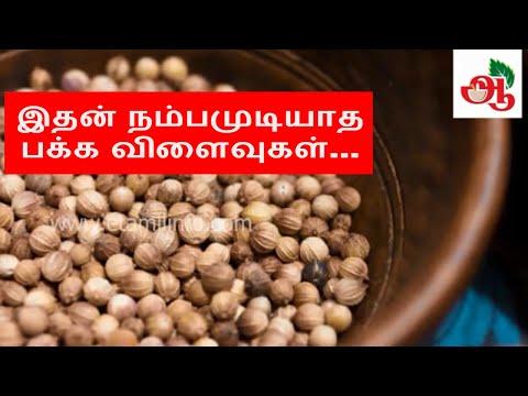 இதன் நம்பமுடியாத பக்க விளைவுகள்... | Side effects of Coriander in Tamil