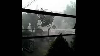 Mengerikan, Pohon tumbang dan suara histeris masyarakat di Alun-Alun Banjarnegara