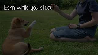 Where Can I Study Canine Psychology Or Dog Training In India?
