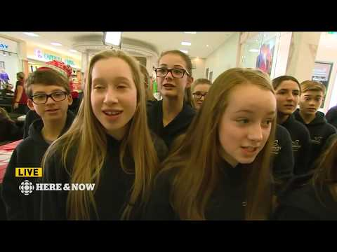 CBC NL Here & Now for Friday 8 December 2017