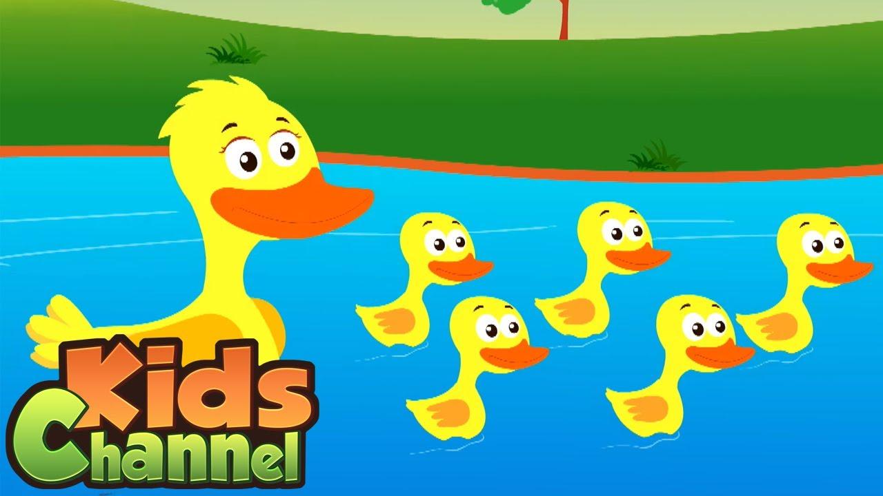 Cinco patinhos | Canção infantil | Animação | Musica para bebes | Desenhos animado