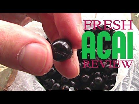 What does fresh Acai fruit taste like? - Weird Fruit Explorer Ep 212