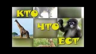 Что едят животные? - развивающий мультик для малышей!