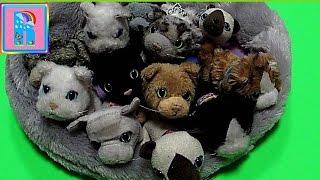 "Журналы с игрушками ""Коллекция кошек""/Magazines with toys ""The cat collection"""