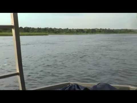 Uganda - Nile River Cruise to Bottom of Murchison Falls #18 - 24 August 2016