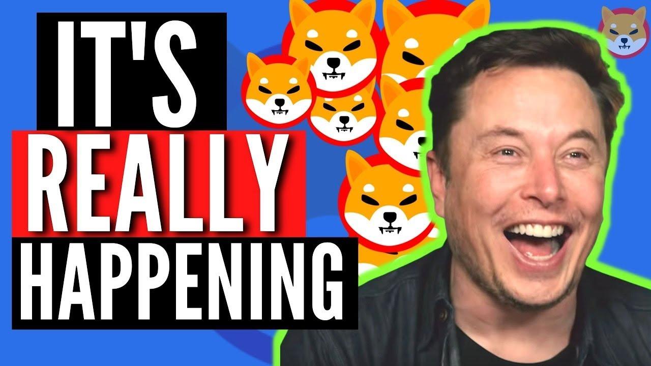 Elon Musk Released That Shiba Inu Coin Will Hit  Soon! Shib News