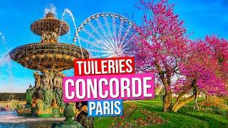 Place de la Concorde, Jardin des Tuileries  | Paris, France (Paris in Spring)
