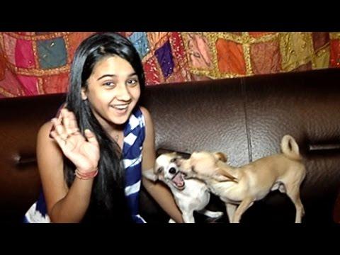 Roshini Walia's Canine Love