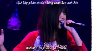 (Vietsub+Kara) Sakura - Ikimono Gakari ▷ LIVE
