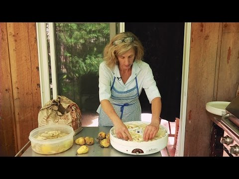 Path to Food Preservation: Householding