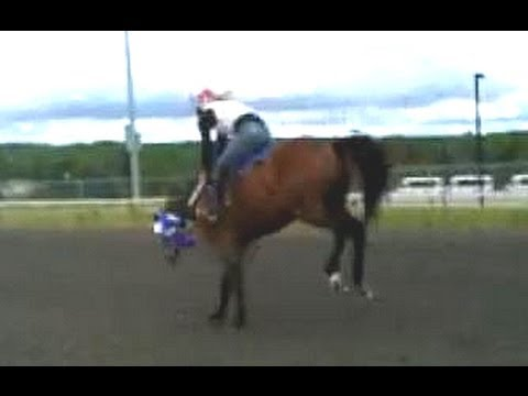 Horse Riding Wallpaper Hd Race Horse Bucking Out Gates Youtube