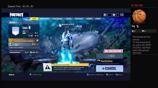 Fortnight  game with my 7 years old  brother solo
