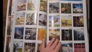 Универсальный бумажный каталог (ЭКОНОМ)(, 2015-11-18T14:20:08.000Z)