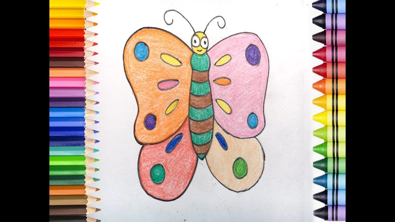 how to draw a colourful butterfly