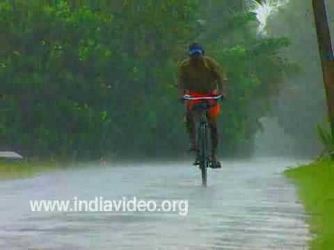 Rain Fall Live Wallpaper Monsoon In Kerala India Youtube