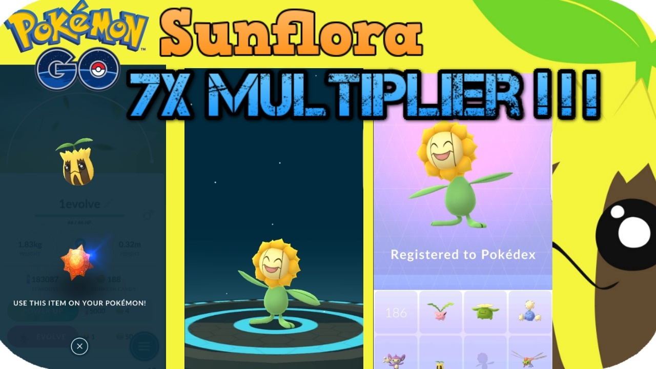 sunflora evolution pokemon go 7x multiplier youtube