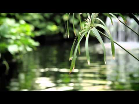 15 Minute Meditation Timer - Zen Meditation Music - Sounds of Nature, Chimes and Wooden Flute
