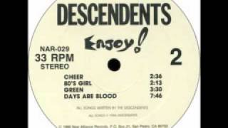 Watch Descendents Days Are Blood video