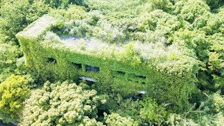 【Drone Japan】4K 猫島(青島)中学校 廃墟 ドローン空撮, 愛媛県 -Nekojima(Aoshima) Junior High School Remains Aerial, Ehime