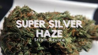 Super Silver Haze Weed Strain Review - ISMOKE