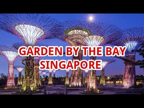 Garden By The Bay Singapore Travel Vacation Guide  - Things To Do | Travel Fun Guide