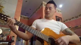 Niềm Đau Chôn Dấu Guitar