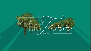 The Really Big Tree Project in Columbia, Missouri