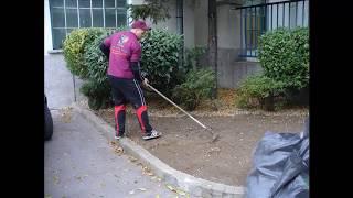 Jak založení trávníku na jílovité půdě