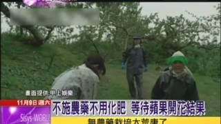 2013.11.09文茜的世界周報/一生懸命之果 木村種出「奇蹟的蘋果」