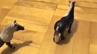 2 серия. Лошади против диких кошек.