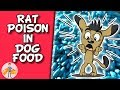 Does your Dog's Food Contain Rat Poison (FDA alert + vitamin D poisoning in dogs)