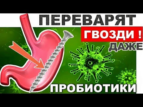 Натуральные ПРОБИОТИКИ - Переварят Даже Гвозди! Полезные бактерии - БИФИДОБАКТЕРИИ.