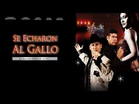 Se Chingaron Al Gallo (1998) | MOOVIMEX powered by Pongalo