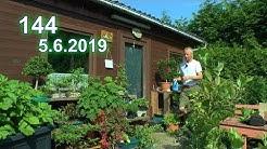 Ab in den Garten mal kleiner Rundgang anfang Juni mit Detlef