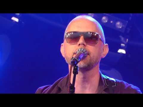 Tomas Andersson Wij - Live @ Malmöfestivalen 2015-08-16