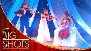 Little Stars String Trio Flawless Performance | Little Big Shots